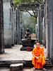 Monk at Ta Prohm near Siem Reap