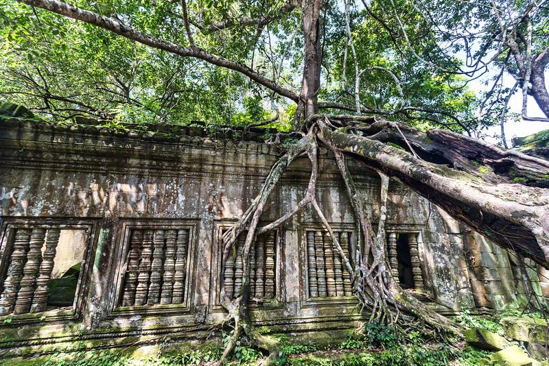 Angkor D (50 of 143)