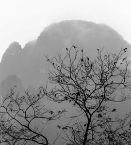Guilin_C (146 of 189)