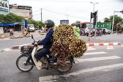 Vietnam A (67 of 334)