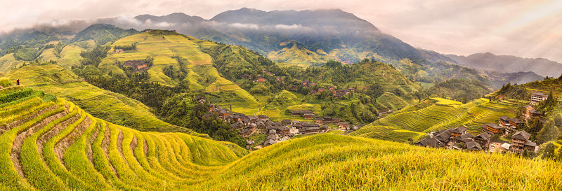 Longji Rice Terrace_Pan_v2