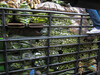 Khlong Toey Market_Bankok (48 of 48)