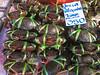 Khlong Toey Market_Bankok (34 of 48)