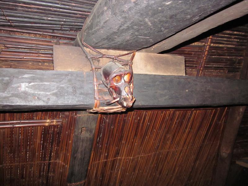 Skull decoration in hut