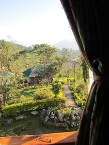 Above the garden
