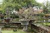 Benoa (Bali)-15