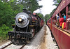 Texas State Railroad - Meeting old No. 300.