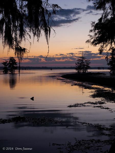 Sunrise, 11/18/2016. Magnolia Ridge, B.A. Steinhagen Lake.