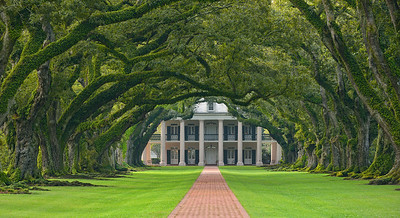 Oak Alley. Vacharie, LA. Built in 1839 and most famous for the double row of 300 year old oaks framing the entrance way. Who planted the trees is unknown as they were already growing when the first Europeans settled the area in the early 1700s