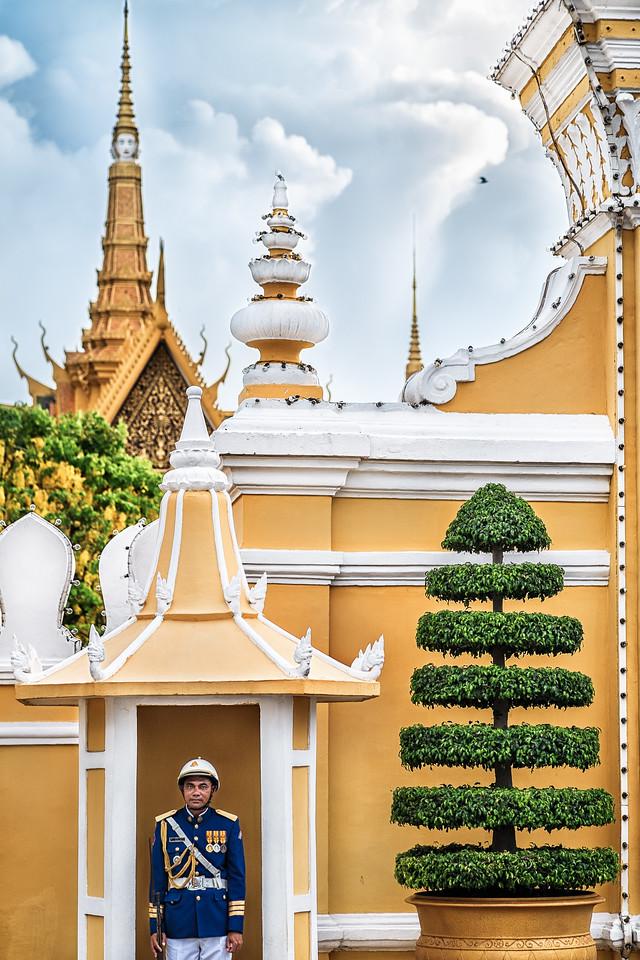 Royal Palace Guard