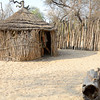 Reed and thatch house used by the Mbunza.
