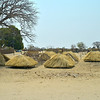 Pre-thatched roofs for huts available for sale!