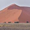 Namib sand dunes of Sesriem, Namibia.<br /> September 7, 2013