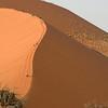 Hikers climbing Dune 45 in Namib-Nauklauft National Park.