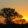 Sunset - Kruger NP, oct 6, 2016 IMG_2858