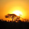 Sunset - Kruger NP, oct 6, 2016 IMG_2846