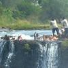 Victoria Falls National Park, Zimbabwe, oct 10, 2016 IMG_35661