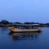 Evening cruise on the Zambezi River, Zimbabwe, oct 9, 2016 IMG_33711