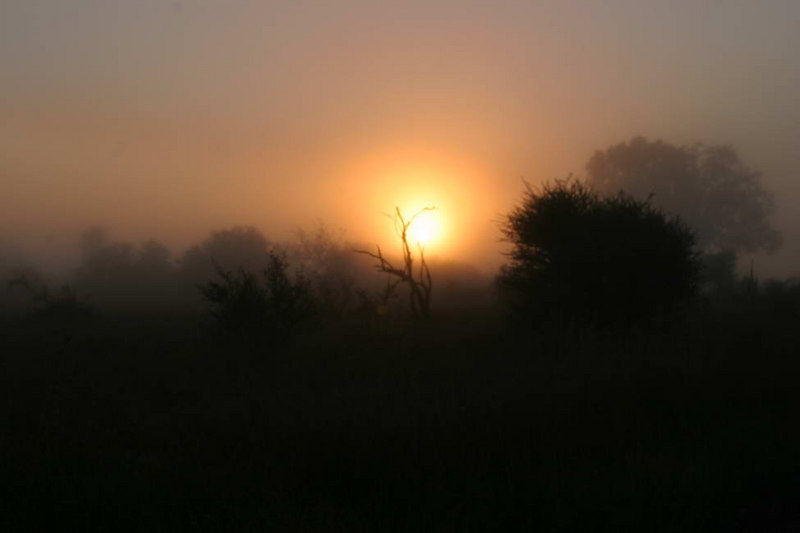 Sunrise, Krugar
