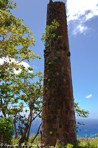 Old sugar mill ruins seen along the trail while horseback riding into the rainforest in St. Kitts