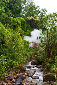 Steam coming from a geothermal feature in Dominica.