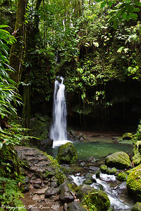 Waterfall at Emerald Pool, Morne Trois Pitons National Park, Dominica.