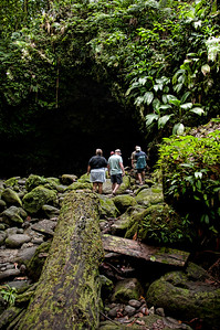 Walking with the group to the bottom of Jacko Falls.