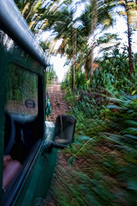A view from Woody's jeep as we go down a bumpy stone road to the beach below.  That's what 4 wheel drive is for!