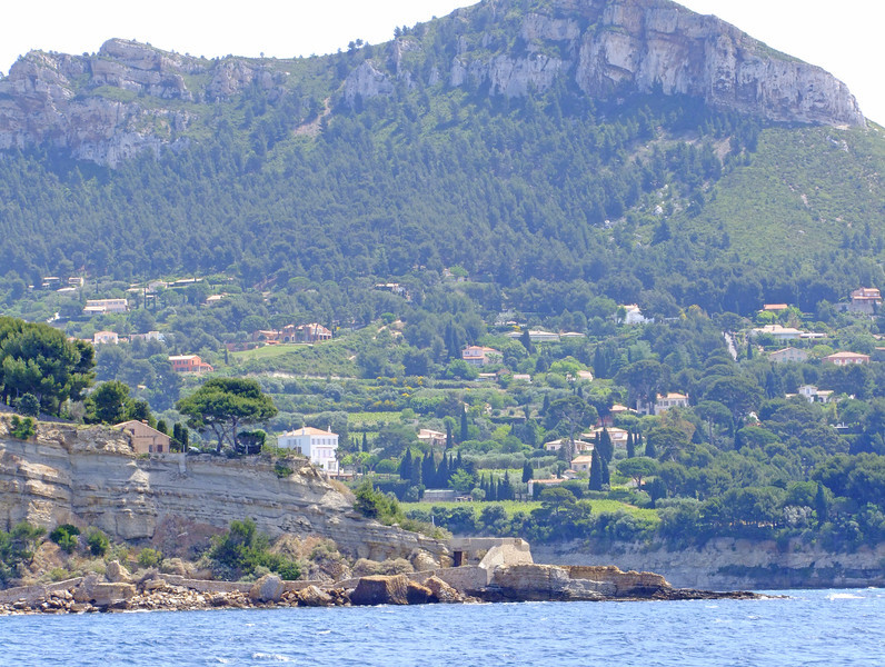 The hillside above Cassis.