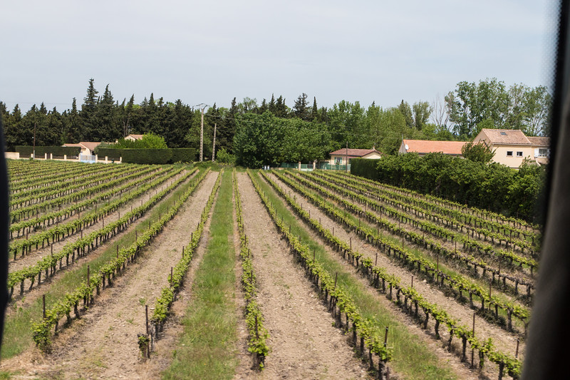 Headed out to Chateauneuf-du-Pape to  explore the town, vineyards, and wineries