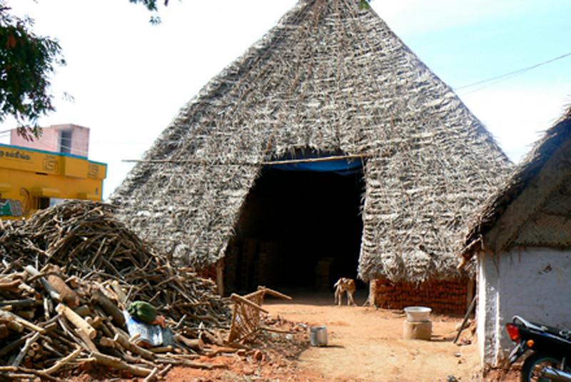 P1020304 Farm Madurai-Periyar Road