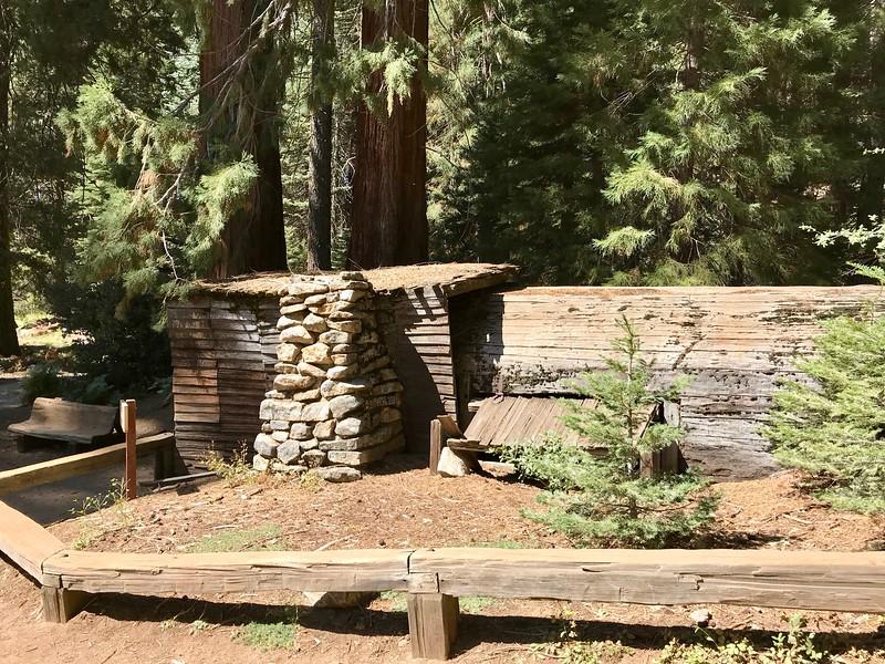 Tharp's log--Side View