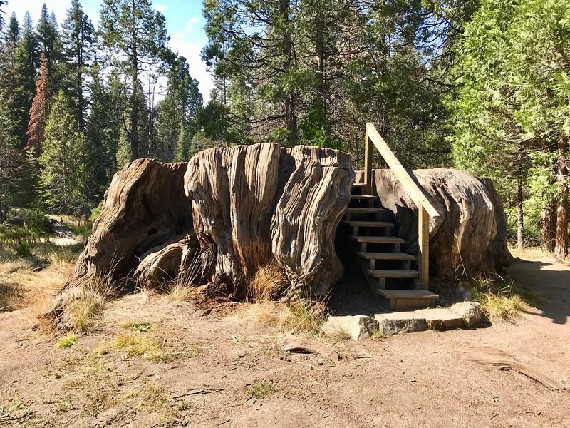 The Mark Twain Stump
