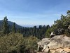 Redwood Mountain Grove, final look
