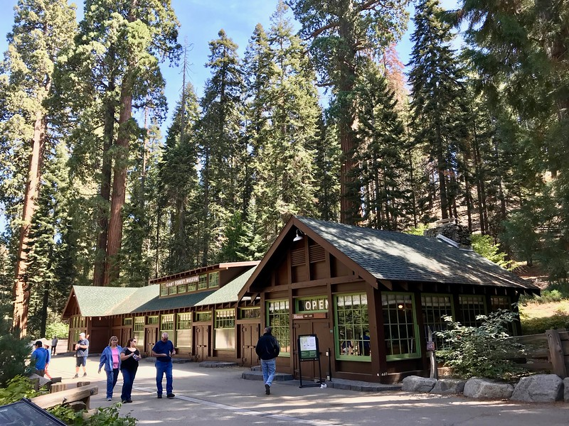 Giant Foresty Museum