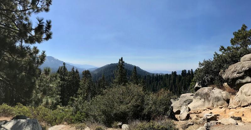 Redwood Mountain Grove panorama