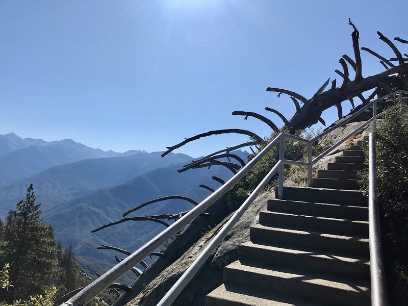 First View of the High Sierra