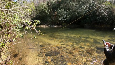Fly Fishing in North Carolina-clip2 - March 2019