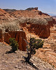 Desert view in Cathedral Valley section of Capitol Reef NP