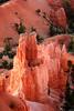 Hoodoos at sunrise in Bryce Canyon N.P. Utah