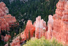 Hoodoos of Bryce Canyon N.P. at sunrise