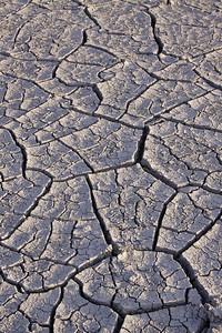Mudcracks, Utah