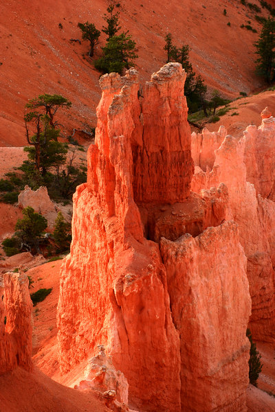 Hoodos of Bryce Canyon N.P., Utah at sunrise