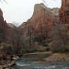 North fork of the Virgin River.