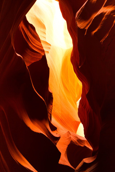 The slot canyons are formed when water rushes through soft Navajo Sandstone, carving narrow channels. The sunlight shows of the golds, reds, yellows, oranges, pinks of this stone