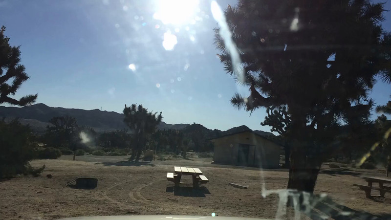 Black Rock Campground to Joshua Tree National Park Oasis Visitor Center