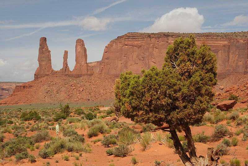 "The ""Three Sisters"", Monument Valley"