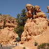 Rock formations in Red Canyon near Bryce Canyon.