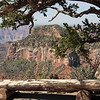 Grand Canyon North Rim view.