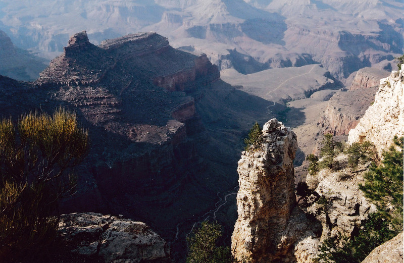GRAND CANYON , ARIZONA: Okay, you don't always need trees.